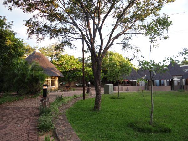 Camp Pretoriuskop