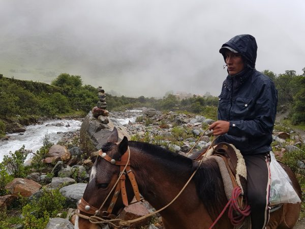 Cavalo para alugar na Laguna Humantay