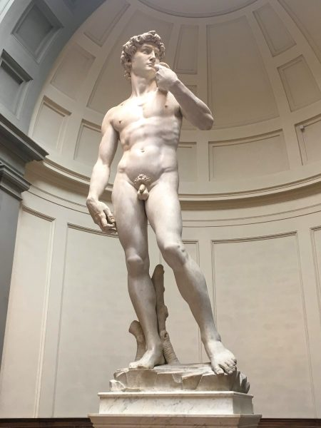 Davi de Michelangelo, na Galleria dell'Academia